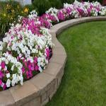 Cashing in on National Lawn and Garden Month