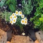Get Your Home and Garden Products Ready for Spring with Custom Labels