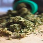 Better Product Packaging Labels May Prevent Accidental Marijuana Ingestion